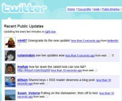 twitter public update page
